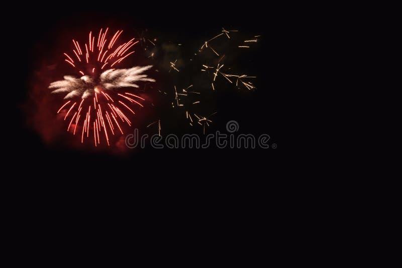 Enige vuurwerkbloem op een donkere achtergrond royalty-vrije stock foto's