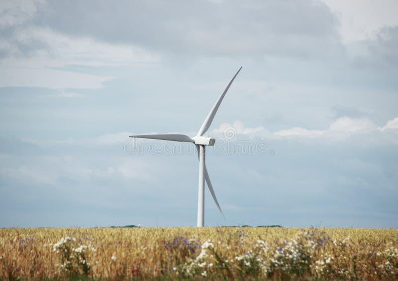 Enige windmolen op grasgebied met wolken stock foto