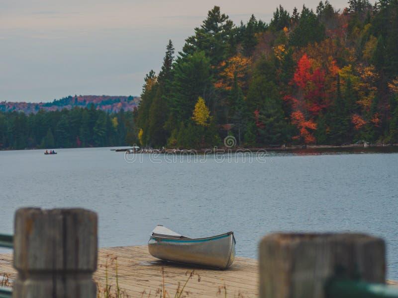 Enige zilveren kano die zich op houten dok naast meer met kleurrijk dalingsbos erachter bevinden in Algonquin Park, Canada royalty-vrije stock foto's