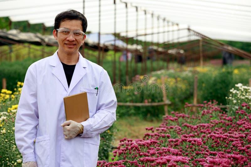 Enior-Wissenschaftler-Holding taplet und Lächeln während der Prüfung der Chrysantheme lizenzfreies stockbild