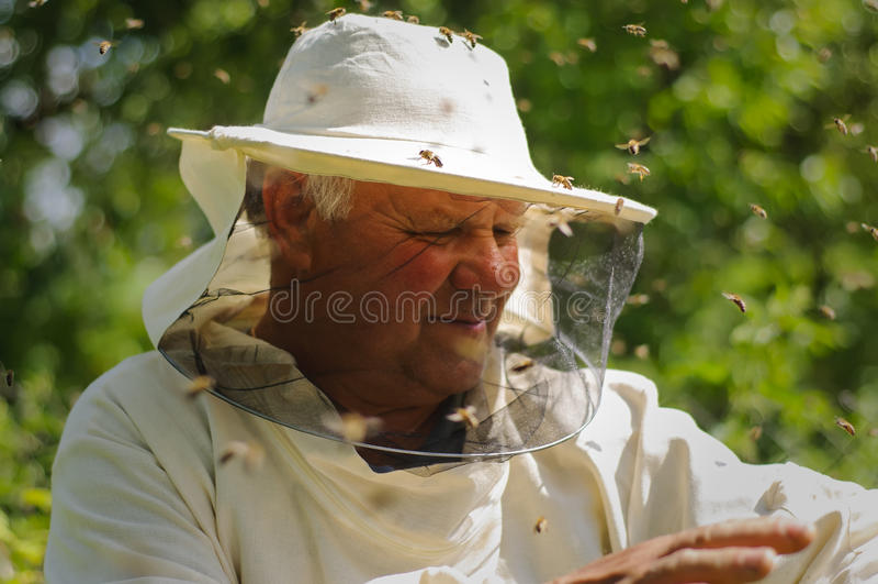 Enjambre del apicultor y de la abeja foto de archivo libre de regalías