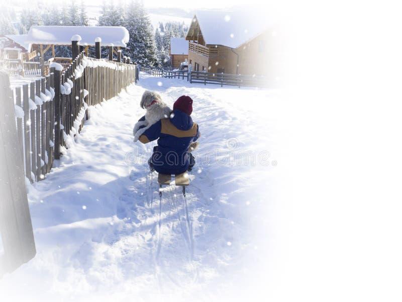 Enjoing vinter för ung kvinna på sleight Wwinter gyckel royaltyfria foton