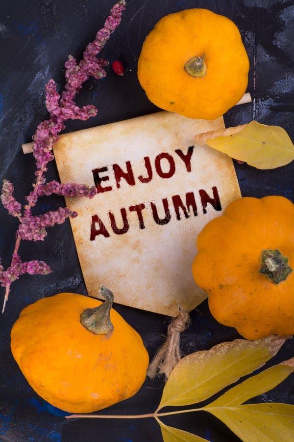Enjoy autumn stock image