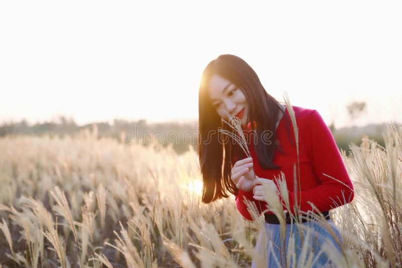 Enjoy in autumn sun , Young pretty woman stand on the grass and smiling at autumn sunset. Nature, natural. stock photo