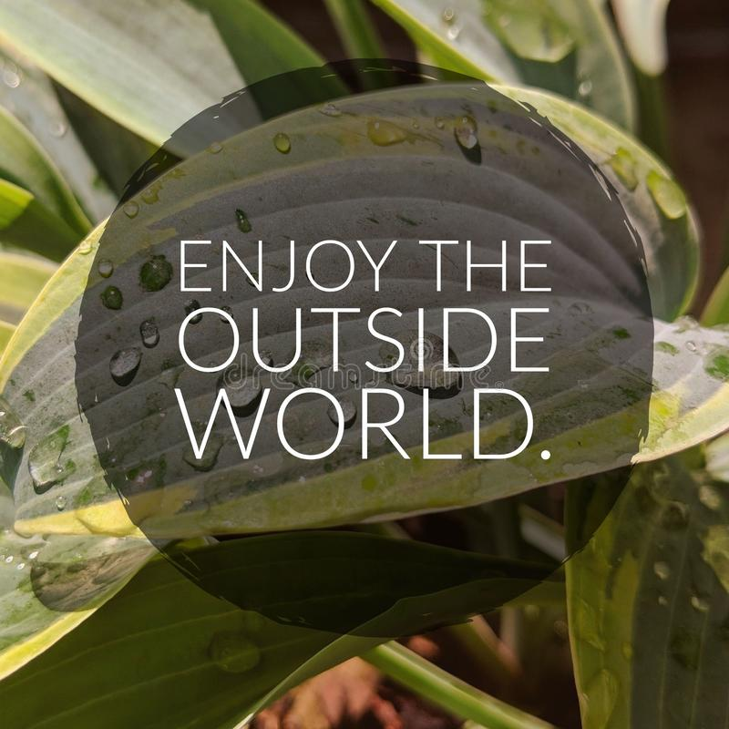 Enjoy The Outside World. Live life to the fullest and enjoy the outside world royalty free stock photography