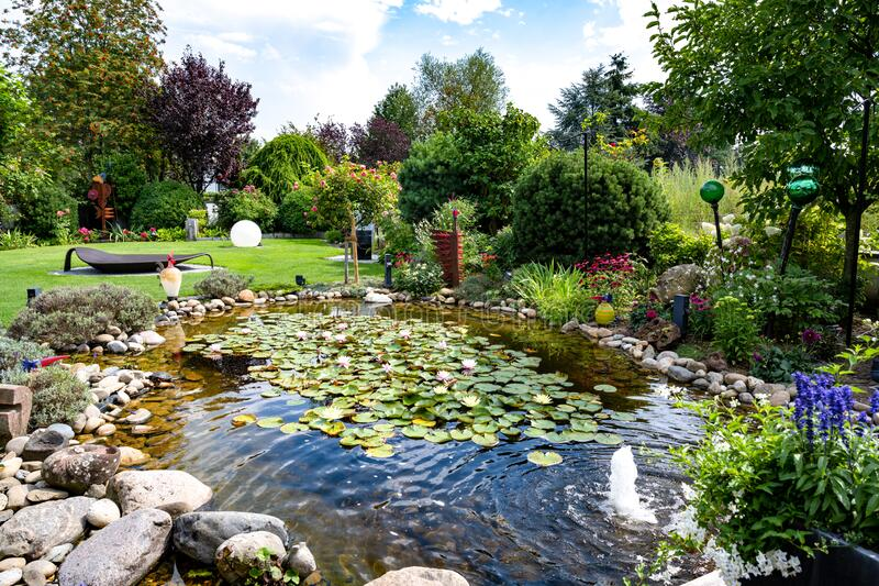 Garden with water lilies on pond, flowerbeds and trees in summer.  royalty free stock photography