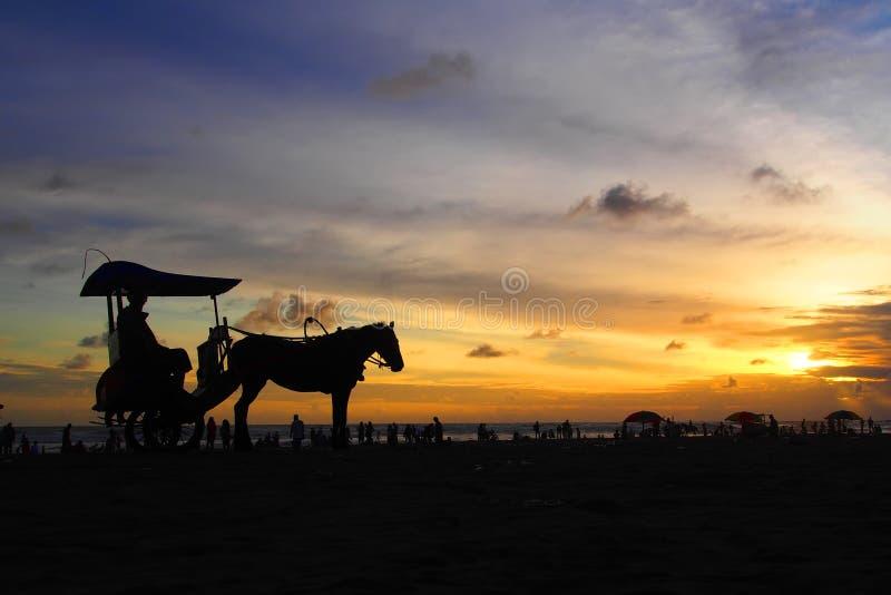 Enjoying Sunset royalty free stock image