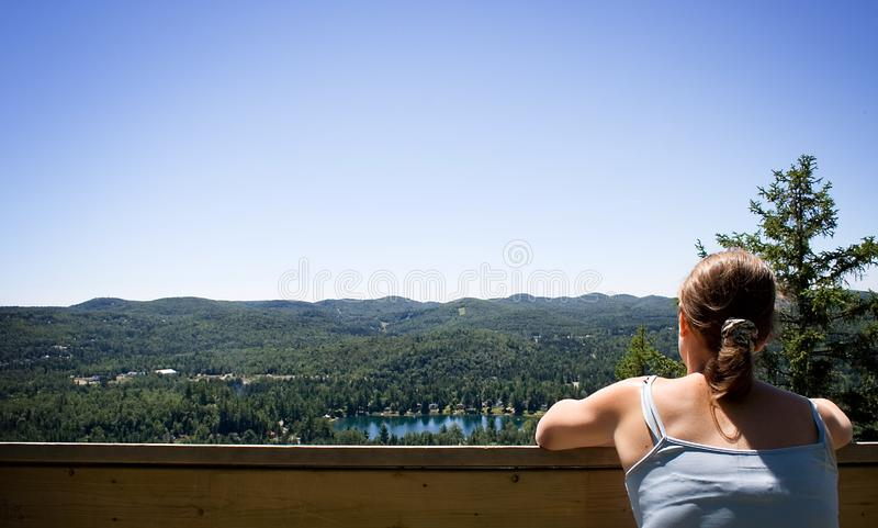Enjoying The View Stock Images