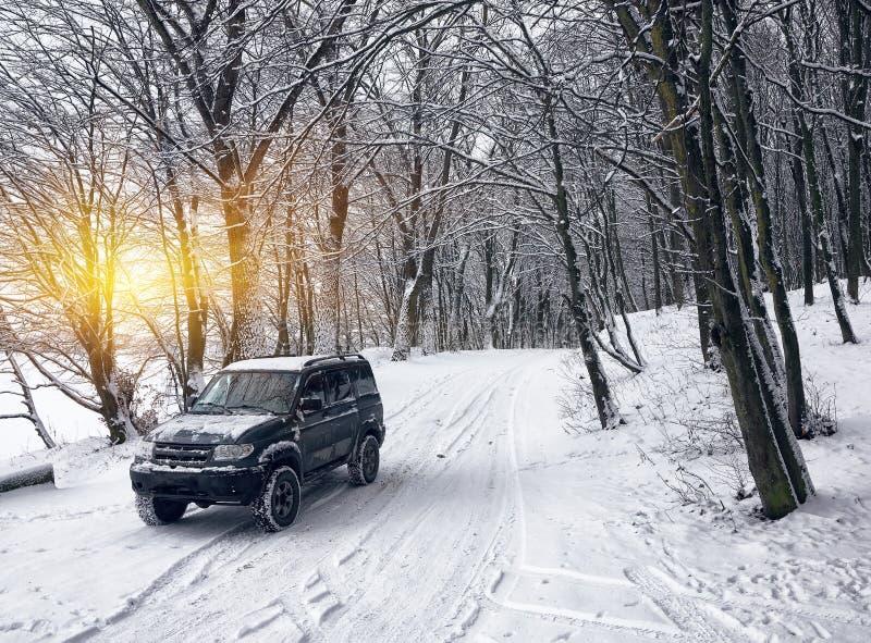 Enkel bil på en vinterväg i skogen royaltyfria bilder