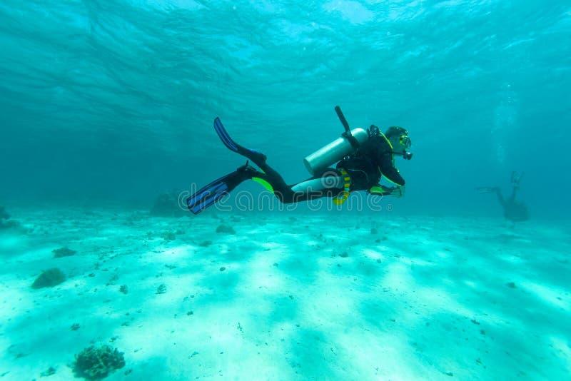 enkel dykare fotografering för bildbyråer
