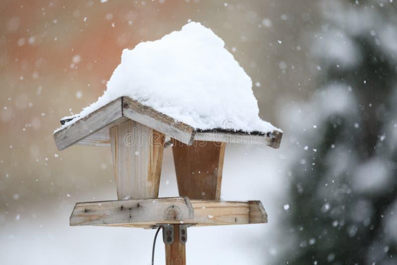 Enkel fågelförlagematare i wintergarden royaltyfri foto