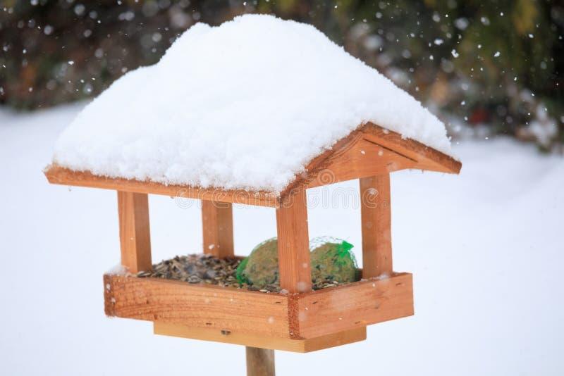 Enkel fågelförlagematare i wintergarden royaltyfri bild