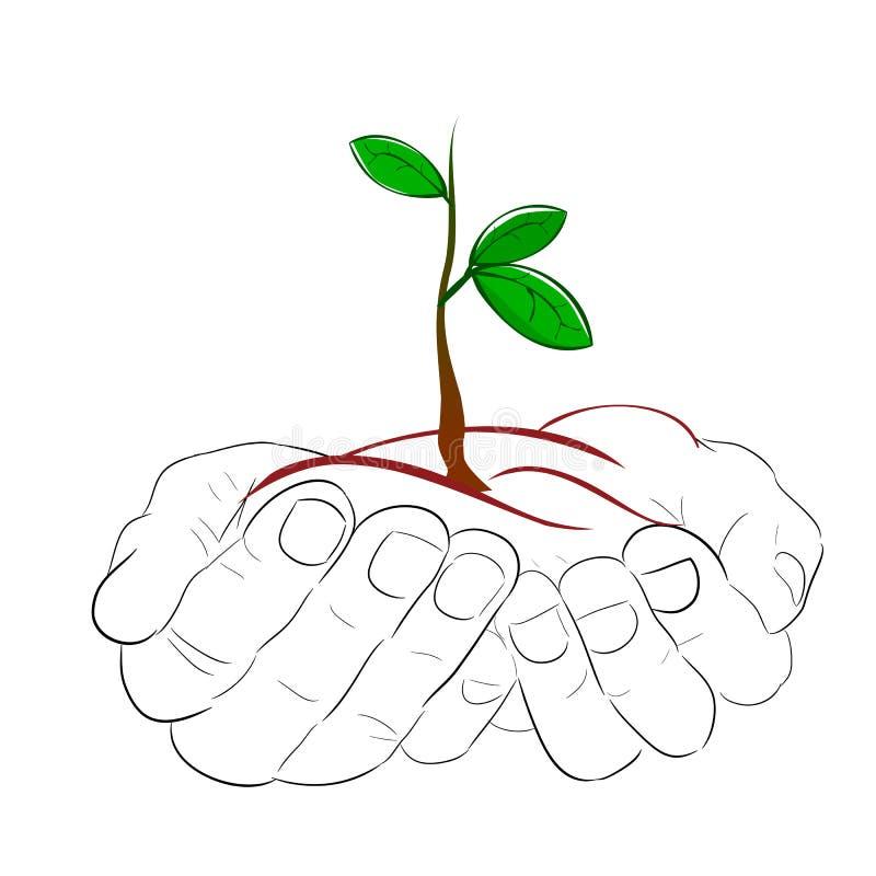 Enkel handhåll eller att komma med den lilla växten med 3 nytt grönt blad, illustration för nya generationen, hopp royaltyfri illustrationer