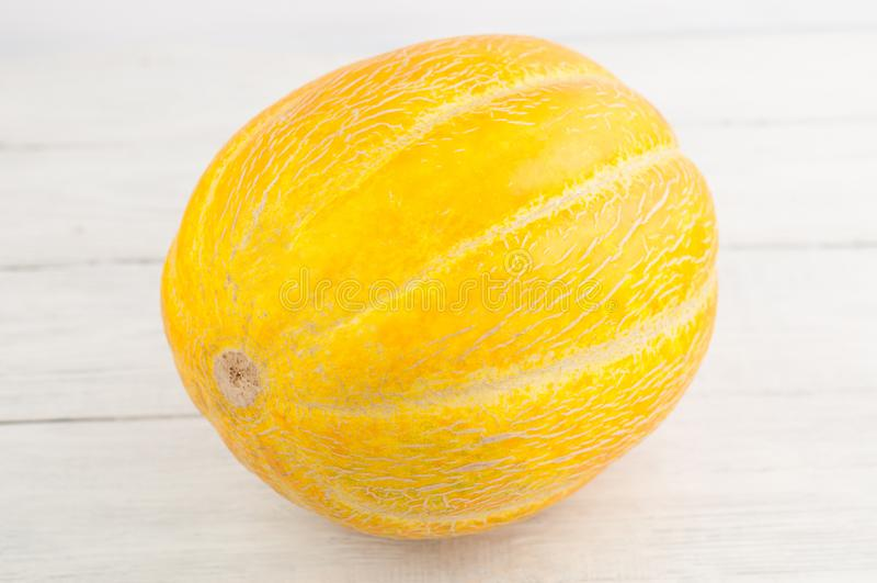 Enkel hel ny mogen melon royaltyfri bild