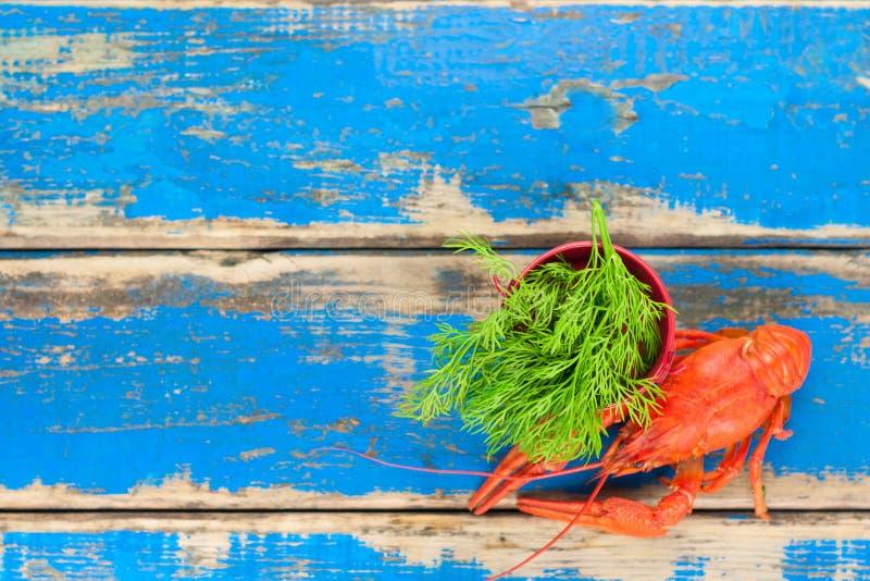 Enkel hel röd kokt kräfta och liten röd metallhink med ny grön dill royaltyfria foton