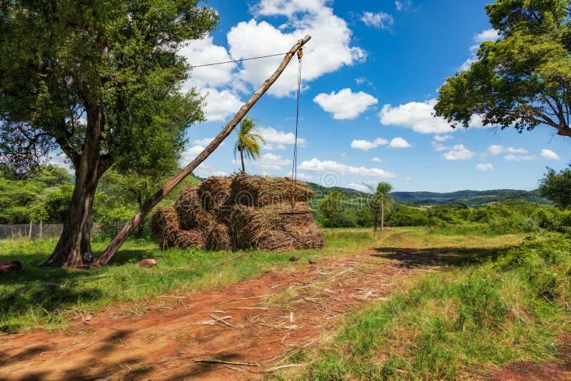 Enkel kranapparat för att ladda sockerröret på lastbilar i Paraguay royaltyfri foto