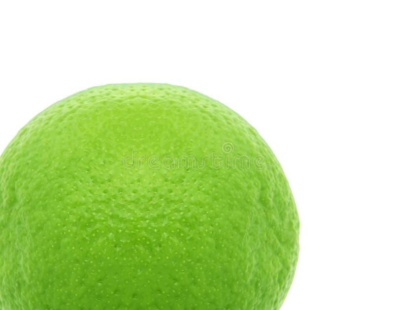 Enkel limefrukt på vit bakgrund royaltyfri fotografi