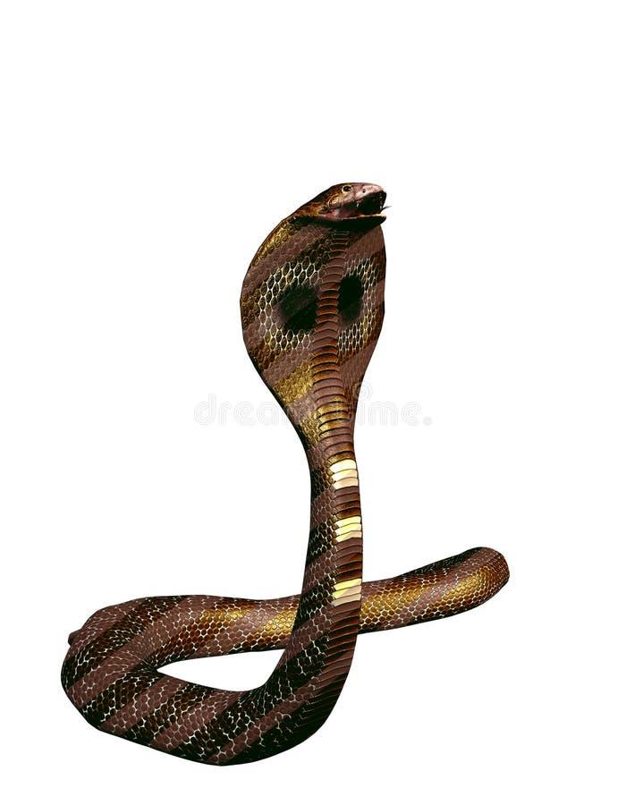 enkel orm för brun kobra stock illustrationer
