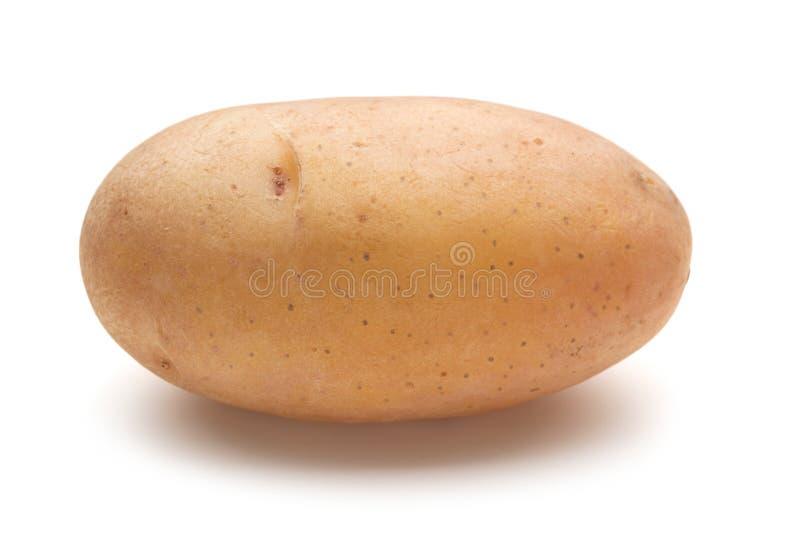 Enkel rå potatis arkivfoton