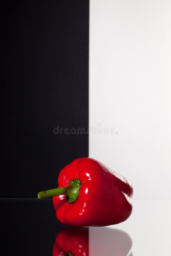 Enkel röd peppar på svartvit bakgrund arkivbilder