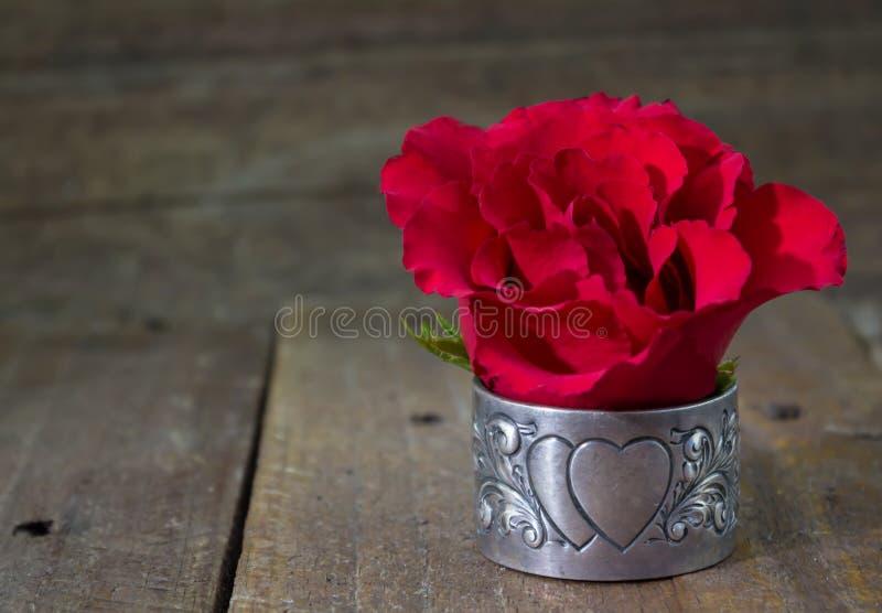 Enkel röd ros på lantlig wood bakgrund royaltyfri bild