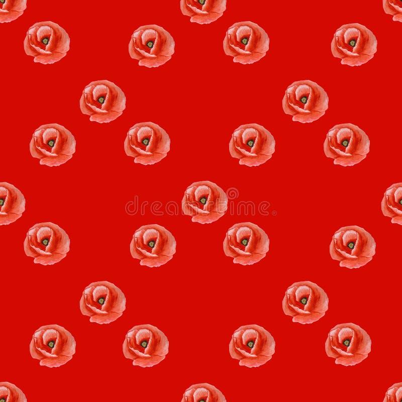 Enkel sömlös textur av vallmoblomman på en röd bakgrund vektor illustrationer