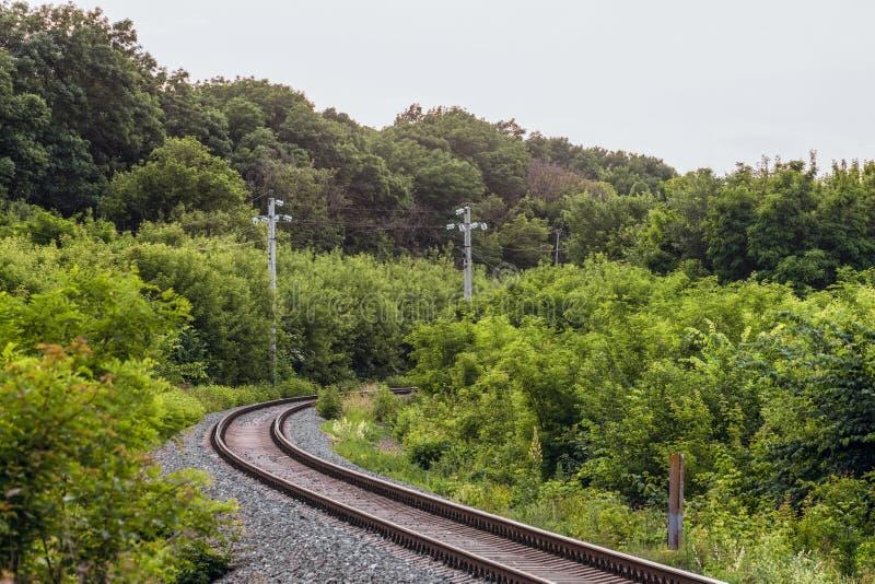 Enkelspåriga järnvägvänd bland gröna träd royaltyfria foton