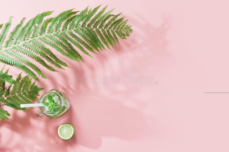 Enkelt blad av ormbunken med skugga och tropiskt detoxvatten på bakgrund för pastellfärgade rosa färger Bästa sikt med kopierings arkivbilder