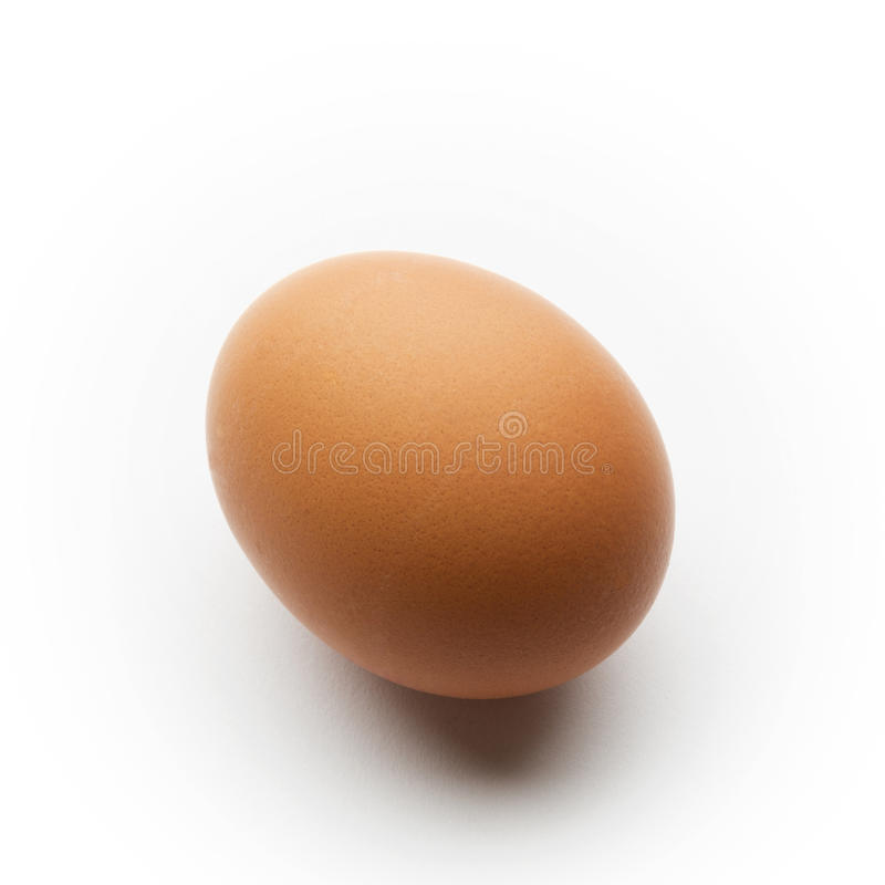 Enkelt brunt ägg som isoleras på en vit bakgrund royaltyfria bilder