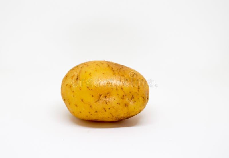 Enkelt ovalt potatisfoto Bild av den rå potatisen för att laga mat royaltyfria bilder