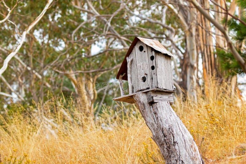 Enkelt träfågelhus överst av trädstubben som omges med ye royaltyfri foto