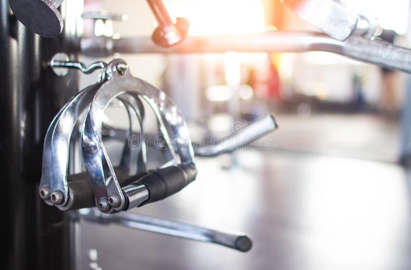 Enkla armar i en modern idrottshall som utför styrkaövningar, trängde för att uppnå olika resultat, kopieringsutrymme som utbilda royaltyfri fotografi