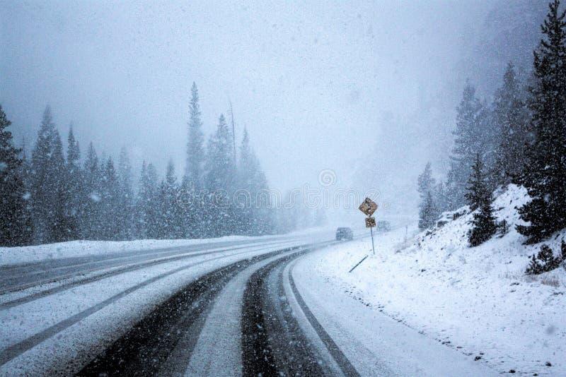Enkla snöig däckspår - stående royaltyfria foton