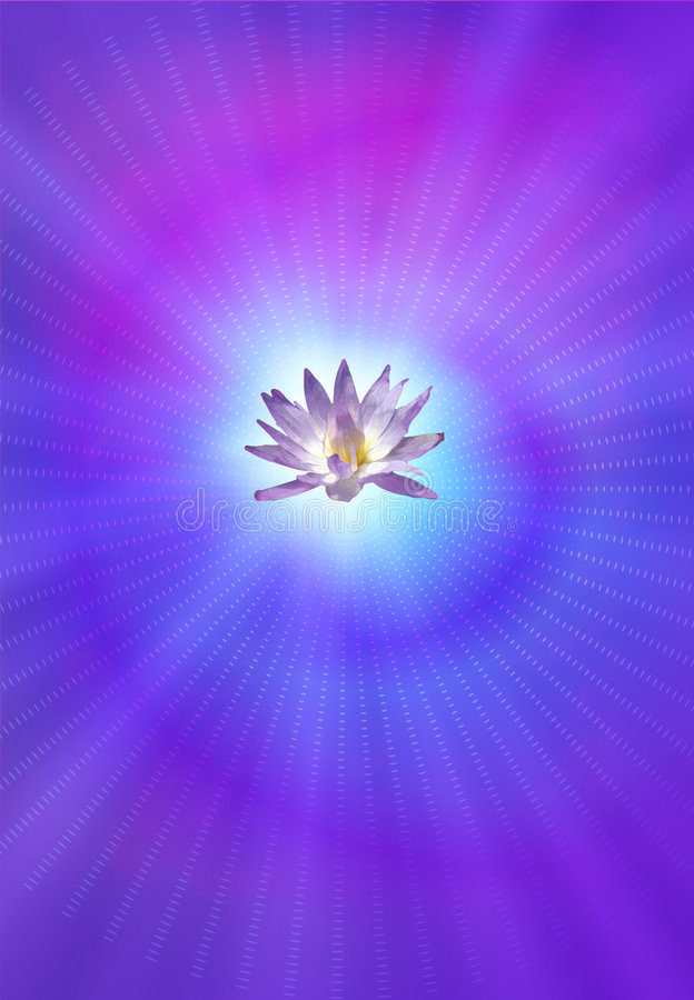 Free Enlightenment Lotus Royalty Free Stock Images - 2882369