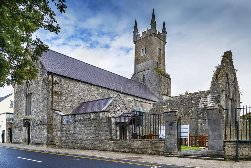 Ennis Friary Ennis, Irland royaltyfri fotografi