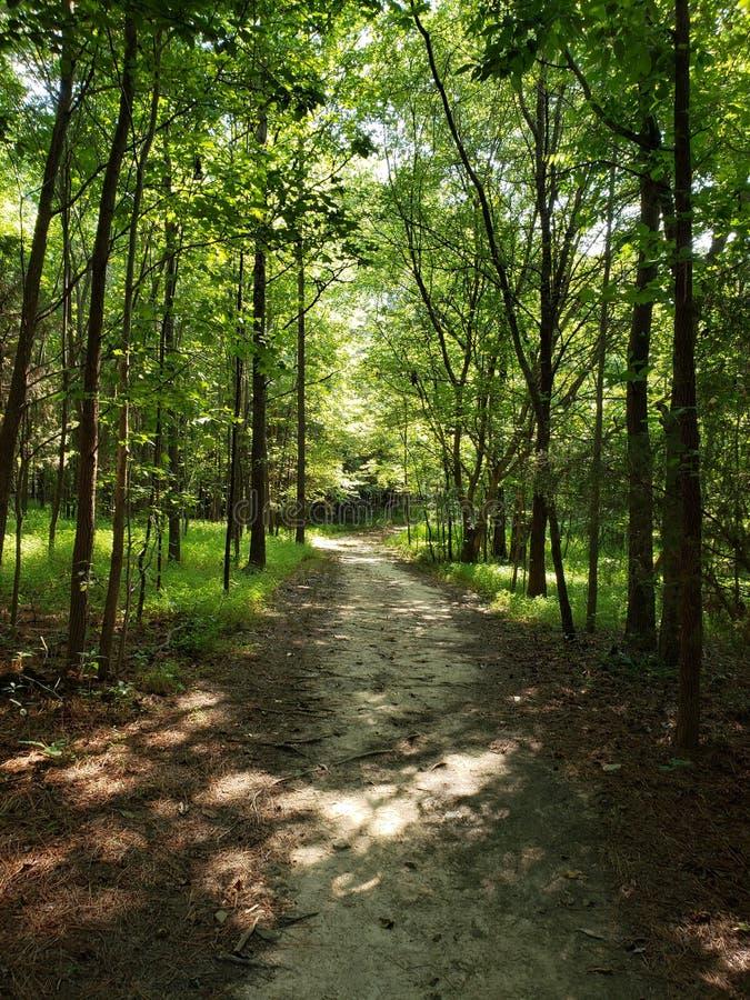 Eno Hiking Trail fotografia stock