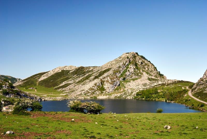 Enol lake. Covagonga, Asturias, Spain stock photo