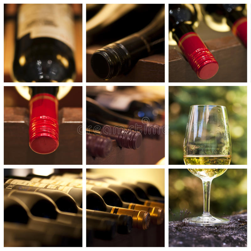 Enologia e collage del vino fotografia stock