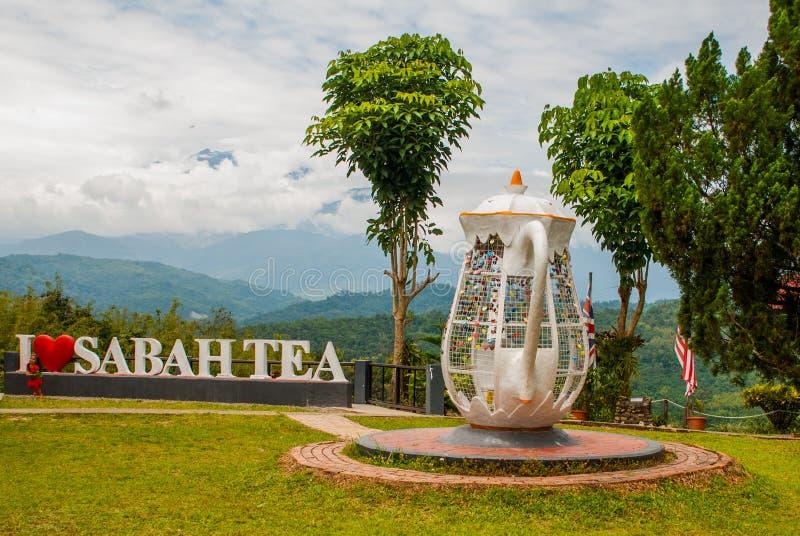 Enorm vit bokstäver älskar jag Sabah te, och kokkärlmetall låser fast Borneo Malaysia arkivbild