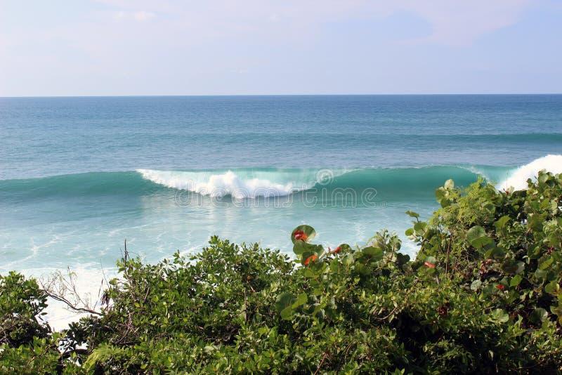 Enorma vågor i Puerto Rico arkivfoton