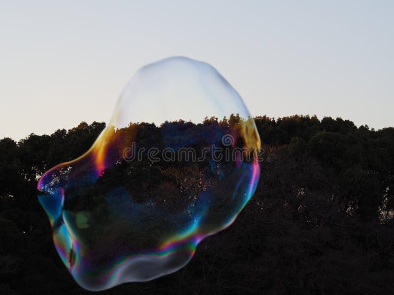Enorme Blase, die einen Regenbogen von Farben, kontrastiert durch den dunklen Wald hinter ihm und ungefähr bersten reflektiert stockfotos