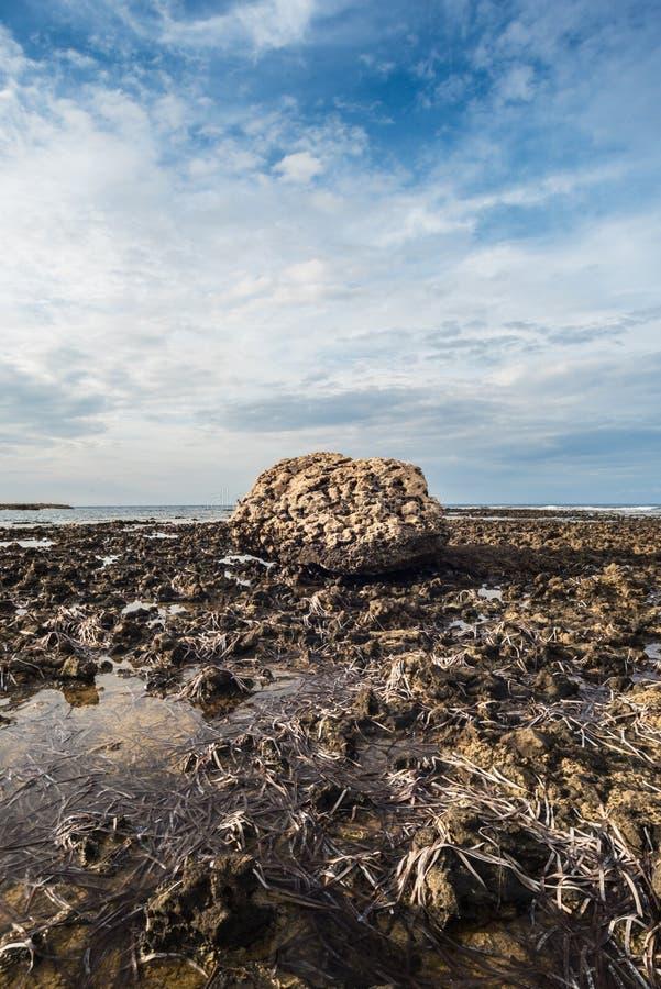 Enormer, abgefressener Stein auf der felsigen Küste während des Ausflusses lizenzfreies stockfoto