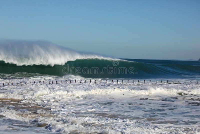 Enormer Brandungs-Newcastle-Strand Australien lizenzfreie stockbilder