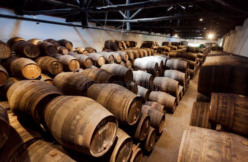 Enormer Raum der traditionellen Weinkellerei mit dunkler Weinkellergalerie und Zahlen von hölzernen Fässern für Weinproduktion stockbilder