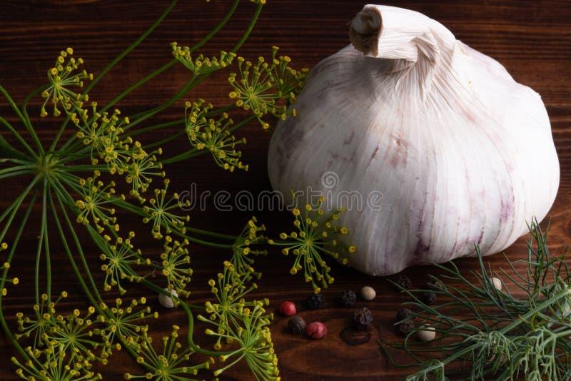Enormer, rustikaler Knoblauch mit schwarzem, weißem, rotem Pfeffer, Dill und Petersilie auf altem Holztisch Betrachten der Kamera lizenzfreie stockbilder