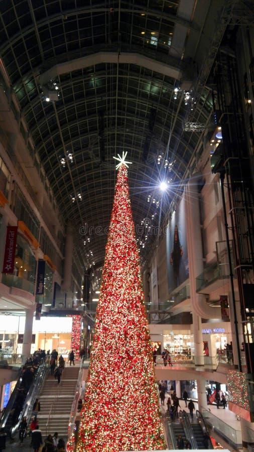 Enormer Weihnachtsbaum, der die Weise für Käufer in einem Mall beleuchtet stockfotografie