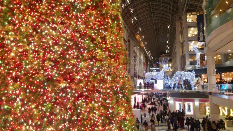 Enormer Weihnachtsbaum, der die Weise für Käufer in einem Mall beleuchtet stockbilder
