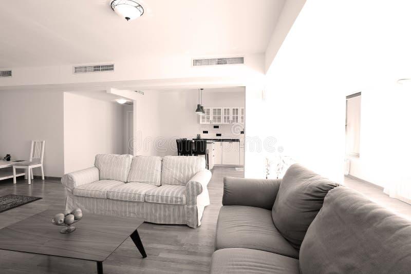Download Enormes Wohnzimmer Mit Offener Küche Stockbild   Bild Von Miete,  Stuhl: 76840095