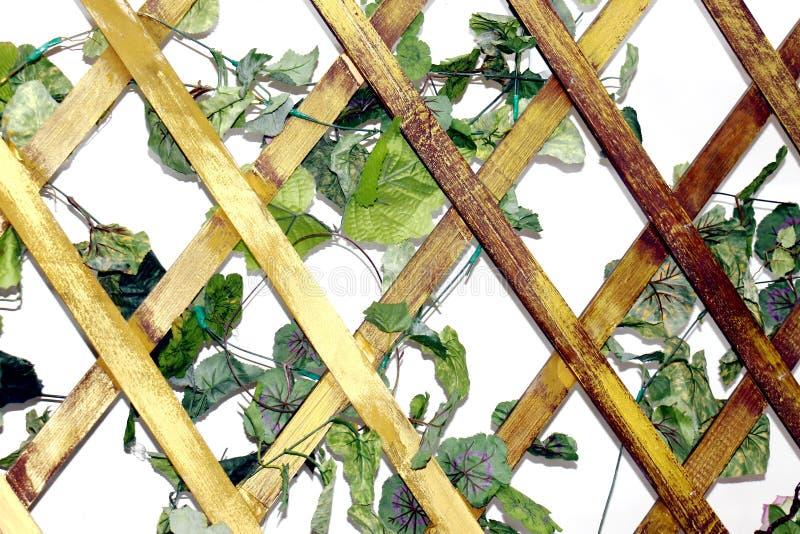 Enrejado de madera del fondo para el rombo de las plantas, cuadrilátero de forma diamantada de la rejilla de madera imagenes de archivo