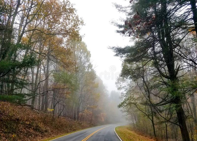 Enrolamento da estrada através de uma floresta no outono foto de stock royalty free
